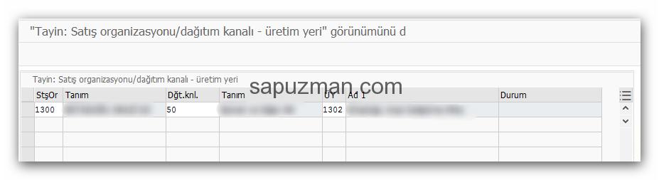 V1369 SAP Hatası