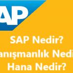 SAP ERP Nedir? SAP Hana Nedir? SAP Danışmanı Nedir? SAP Modülleri Nelerdir?