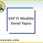 SAP FI Modülünün Genel Yapısı ve SAP FI Modülünün Kapsamı