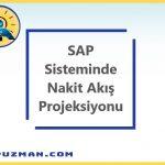 SAP FI Nakit Akış Projeksiyonu Nedir, Nasıl Yapılır ve Uyarlamaları