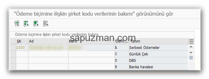 sap_f110_uyarlamalar_12
