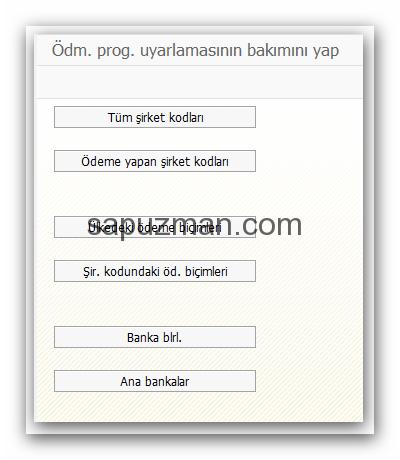 sap_f110_uyarlamalar_2
