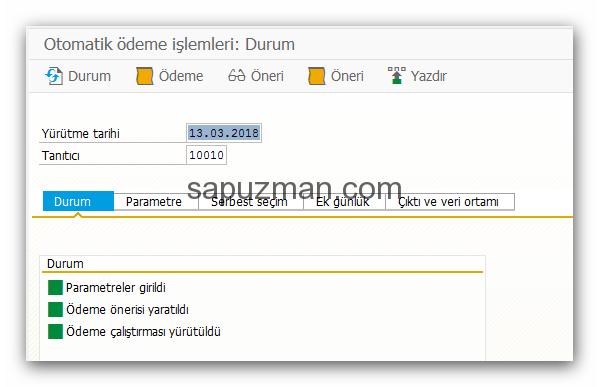 sap_f110_uyarlamalar_28