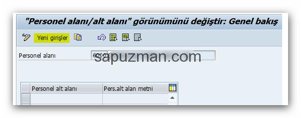 sap_hr_personel_alt_alanı_oluştur2