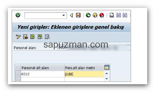 sap_hr_personel_alt_alanı_oluştur3