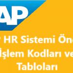 SAP HR Önemli İşlem Kodları ve Önemli Uyarlama Tabloları