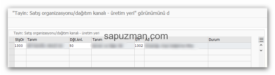 satış_organizasyonu_ve_dağıtım_kanalına_üretim_yeri_tayini3