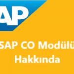 SAP CO (Management Accounting – Controlling) Modülü Nedir? Neden Önemlidir?
