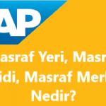 SAP CO Modülünde Masraf Yeri Muhasebesi, Masraf Merkezi (Cost Center), Masraf Çeşidi (Cost Element) Nedir?