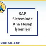 SAP Sisteminde Ana Hesap İşlemlerine İlişkin Kısa Bir Monografi