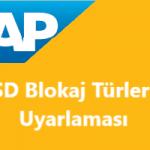 SAP SD Blokaj Nedenleri Tanımlama ve Fatura Türleri İle İlişkilendirme