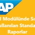 Önemli SAP FI Standart Raporları