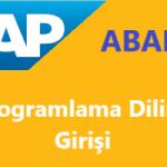 SAP Abap Programlama Diline Giriş, SAP Abap Eğitim Videosu