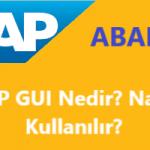 SAP GUI Nasıl Kullanılır? SAP GUI ile neler yapabilirim?