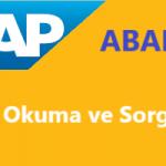 SAP Abap Programlama- Veri Okuma ve Sorgular 3. Bölüm