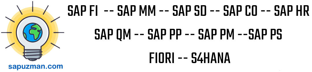 SAP FI, SAP MM, SAP SD, SAP CO, SAP HR, SAP QM, SAP PP, SAP PM, SAP PS, FIORI, S4HANA
