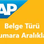 SAP FI/CO Belge Türü Numara Aralıkları Nasıl Tanımlanır?